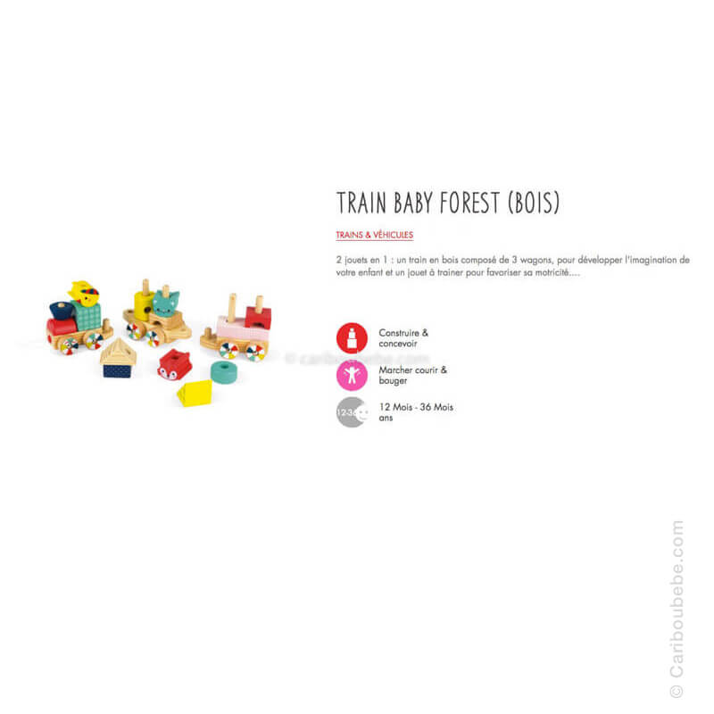 Train Baby Forest en Bois 12M Janod